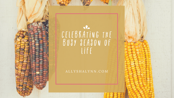 Celebrating the Busy Season of Life title card