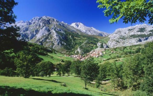 alpine-meadow_