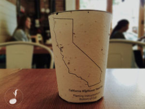 biodegradable coffee  cup