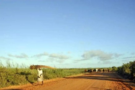 Estrada de terra batida entre Bilene e Zongoene
