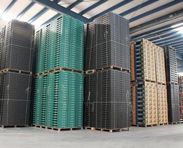 Cajas de Cartn  Industria hortofruticola Almera y