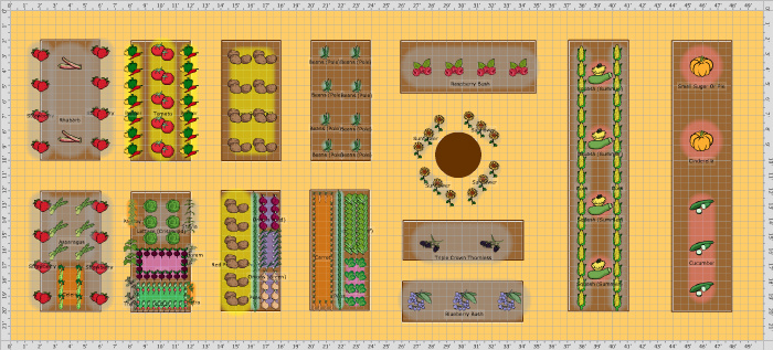 Raised Vegetable Garden Layout 4x8