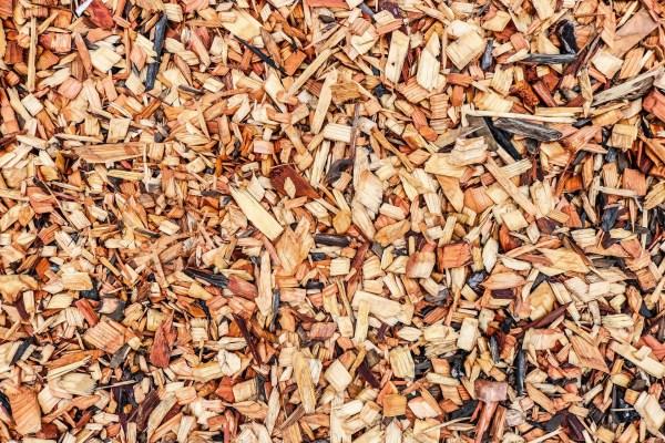 mulching guide benefits of mulch
