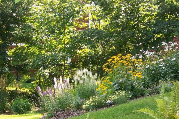 natural landscaping native gardening