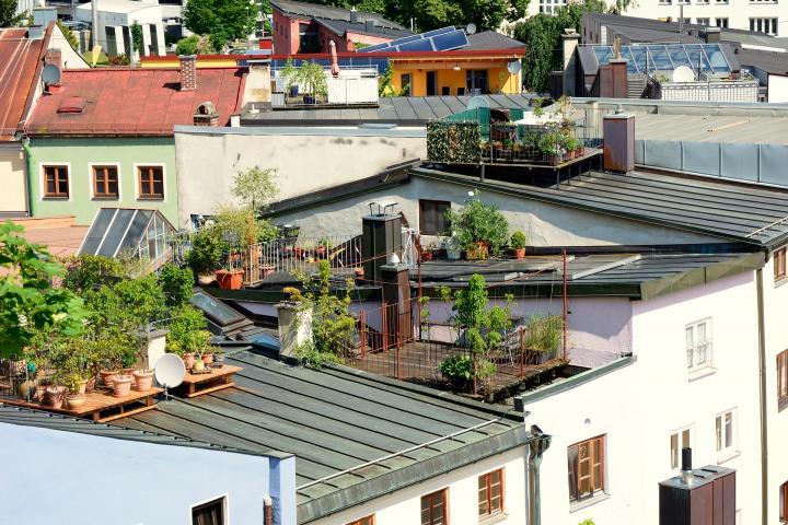 Starting A Terrace Garden Or Balcony Garden Old Farmer S Almanac