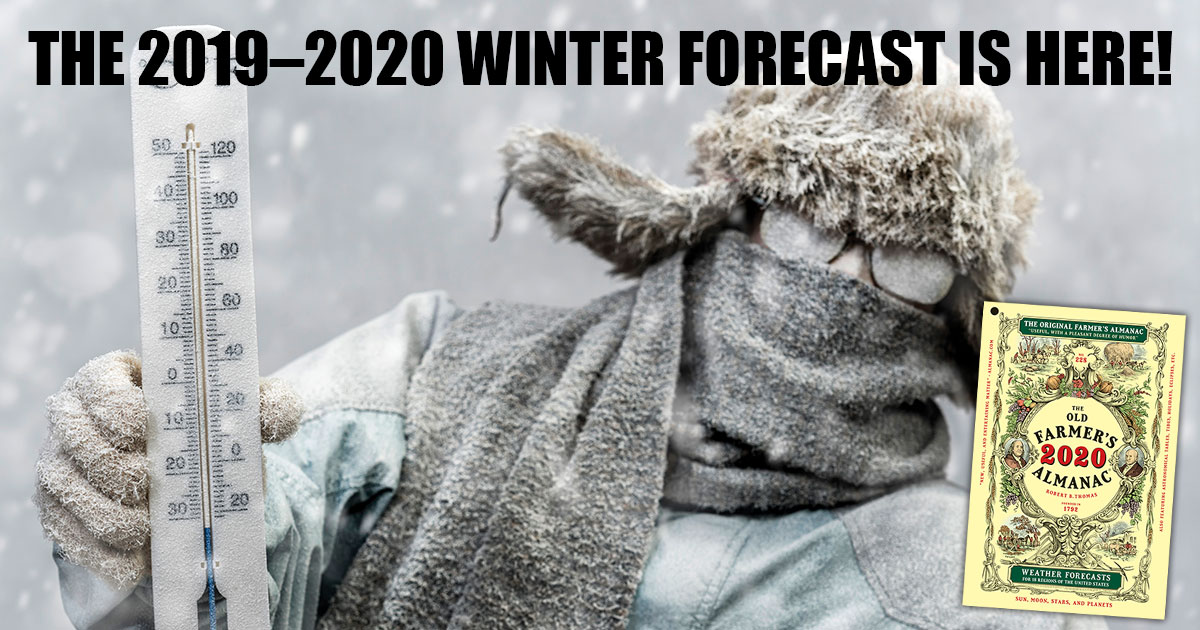 official 2019 2020 winter