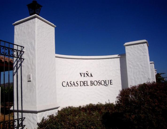 Entrada Casas Del Bosque
