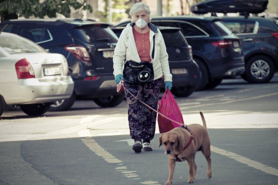 efectos psicológicos tener-perro-mascota personas mayores