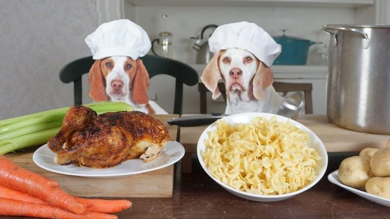 recetas de comida casera para perros
