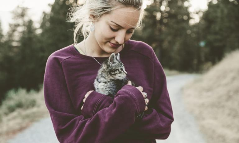 Descubre cómo adoptar un gato en Madrid