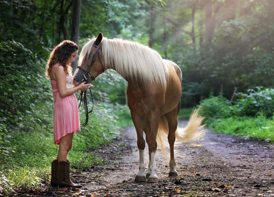 Tener un caballo como mascota tiene muchos beneficios