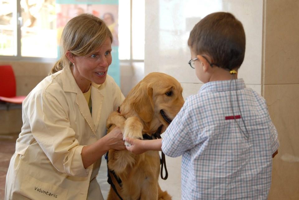 perros en niños con autismo