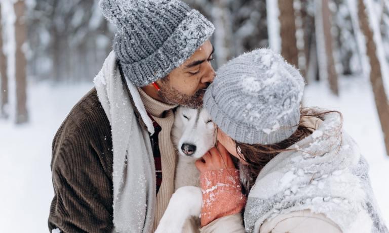 ¿Cómo afecta a los perros el frío?