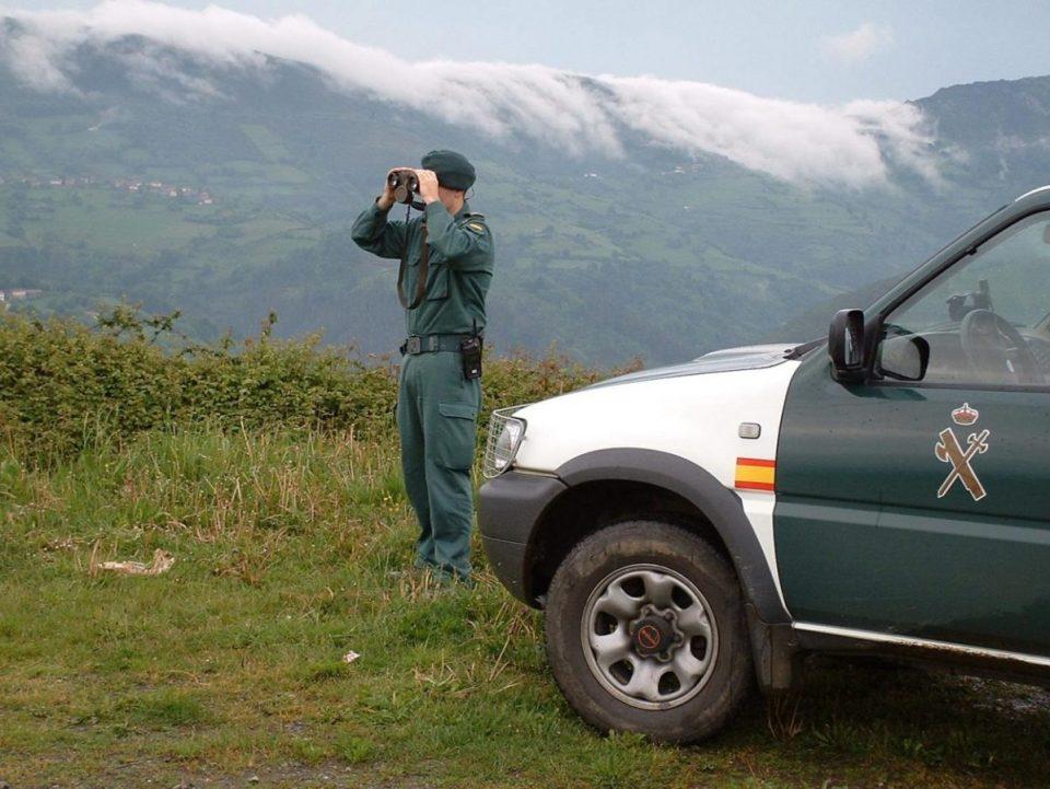 personas están siendo investigadas por delitos contra la biodiversidad