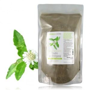 ARZN-poudre-bhringaraj