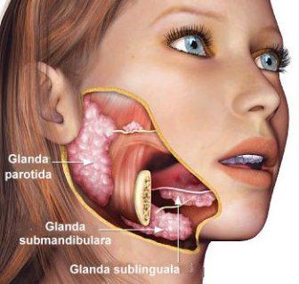 femeie saliva