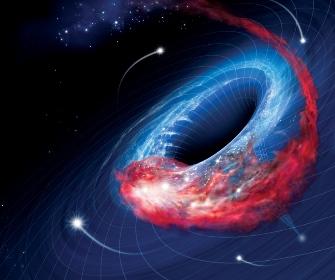 gauri-negre-11