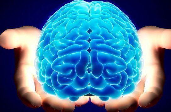 Realizando Backup da mente