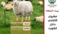 اسعار الاضاحي في الكويت 2022