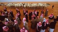 اصل عائلة العلاوي في السعودية