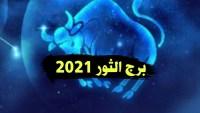 توقعات ماغي فرح برج الثور 2022