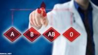 طريقة معرفة فصيلة دمك من خلال رقم الهوية