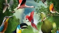 تساعد العظام المجوفة للطيور على ؟