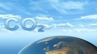 لماذا يحل ثاني اكسيد الكربون محل الاكسجين
