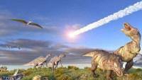 ما هو سبب انقراض الديناصورات