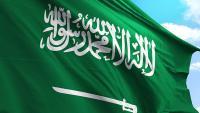 هل تعتبر السعوديه من الدول الناميه