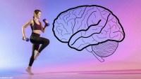 هل تعتقدين ان للنشاط البدني دورا في زياده نسبه الاصابه بمرض السكري