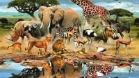 كم عدد ممالك المخلوقات الحية