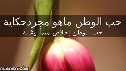 اكتب موضوعا اصف فيه جمال الوطن وادعو ابناءه الى حمايته والحفاظ عليه