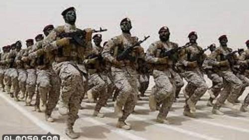 عدد القوات البرية الملكية السعودية