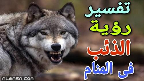 ما هو تفسير رؤية الذئب في المنام