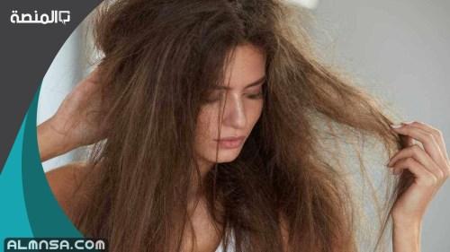 تجربتي في التخلص من نفشة الشعر