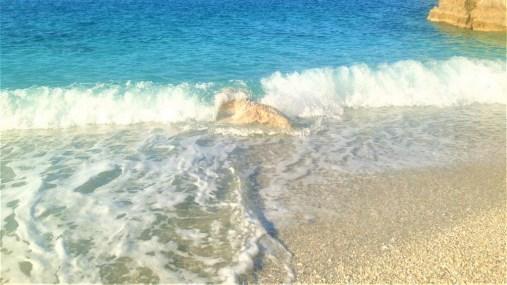 Plaja-Limnionas-Pelion