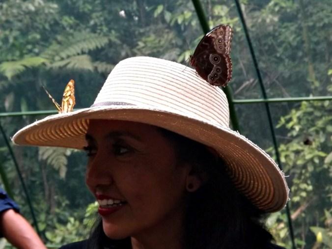 voluntar în Costa Rica