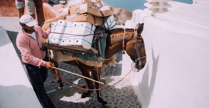 plimbările cu măgărușii în Santorini