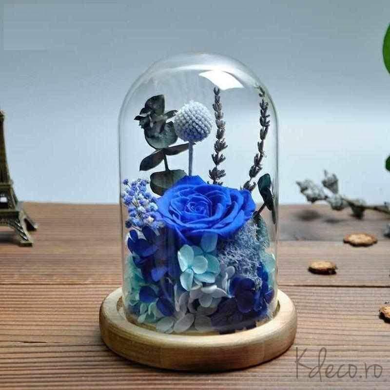 cupole de sticlă cu trandafiri criogenați