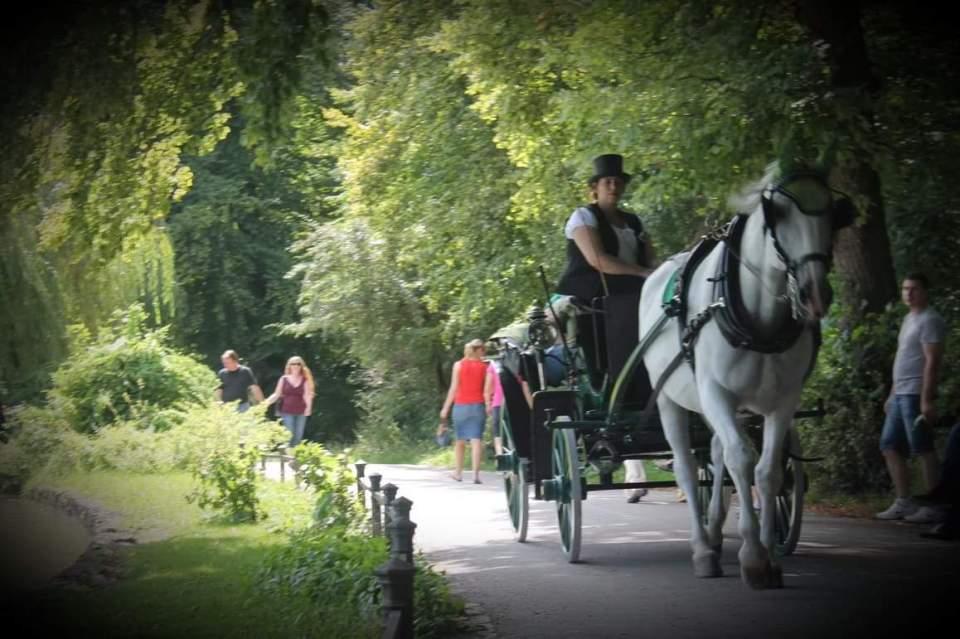 Trăsură în Englischer Garten