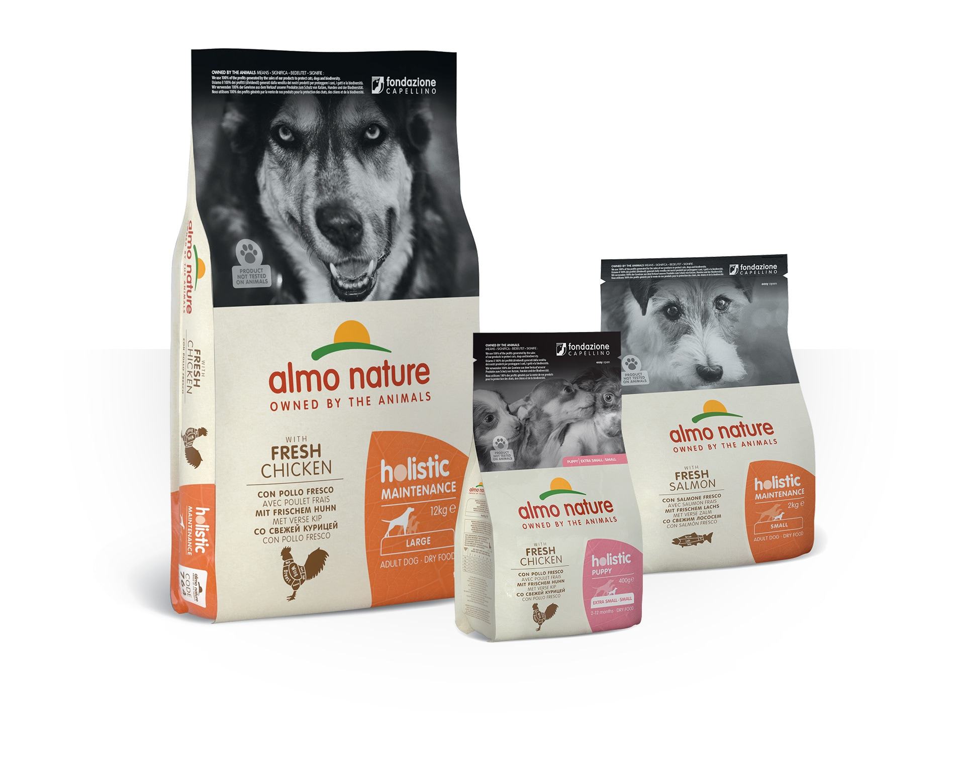 almo nature holistic dog