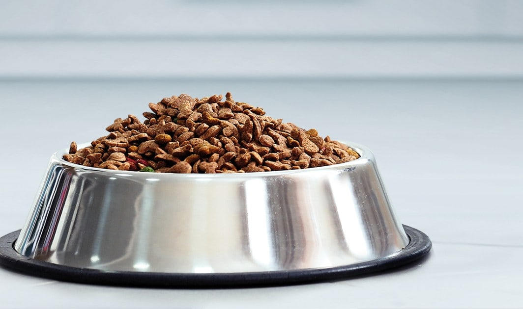 Understanding pet food ingredients, labels and regulations