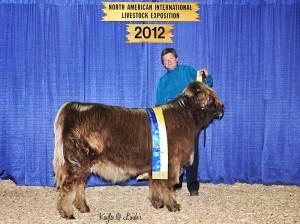 2012 NAILE Division Champion Betsy