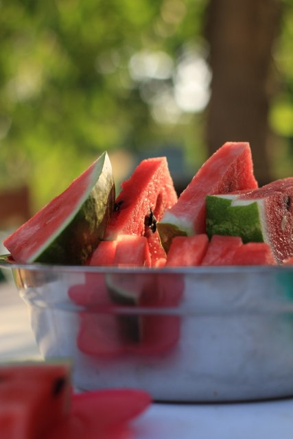 Watermelon on a summer day in Slovakia - Almost Bananas