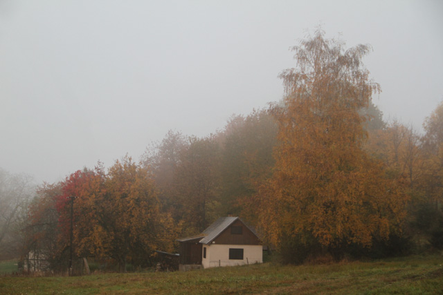 cottage in fog