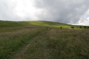 Meadows leading up to Ploska