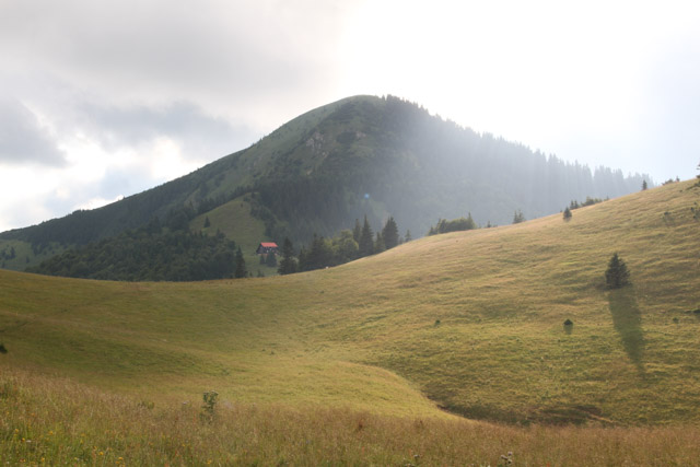 Saddle meadow near Chata pod Borisovom, Slovakia