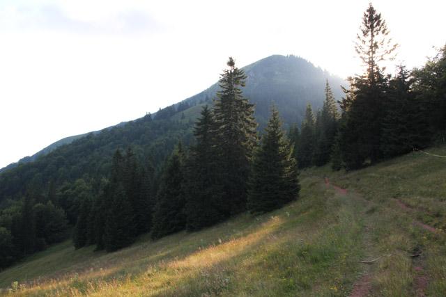Path to chata in Velka Fatra, Slovakia