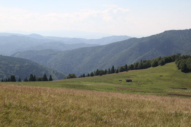 Salas, Slovak sheep farm, in the Velka Fatra